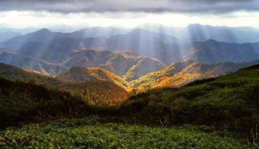 【白神山地】~東アジアに残る最後の原生温帯林~
